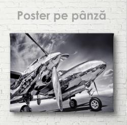 PPoster, Avion alb-negru