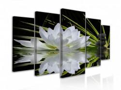 Tablou modular, Floare de lotus misterioasă