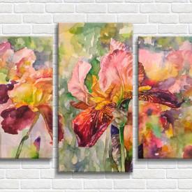 Multicanvas, Irisuri pictate