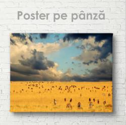 Poster, Animalele în libertate
