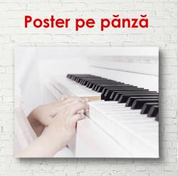 Poster, Cântarea pe piano