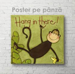 Poster, Maimuță amuzantă