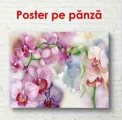 Poster, Orhidee violet pe fundal de acuarelă