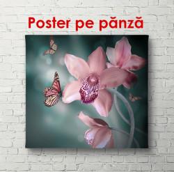 Poster, Orhideea roz delicate cu un fluture pe fond întunecat