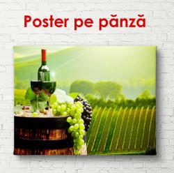 Poster, Sticlă de vin într-o podgorie verde