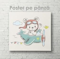 Poster, Ursulețul- pilot