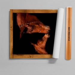 Stickere 3D pentru uși, Iapa și mânzul ei, 1 foaie de 80 x 200 cm