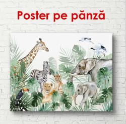 Poster, Desen delicat ai prietenilor africani
