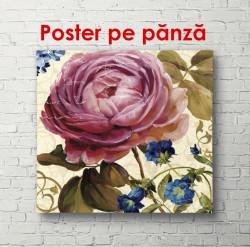 Poster, Floare roz de primăvară