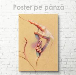 Poster, Siluetă