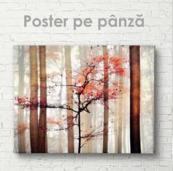 Poster, Toamna