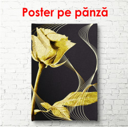 Poster, Trandafir de aur