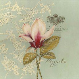 Tablouri Canvas, Floarea delicată de magnolie pe un fond albastru