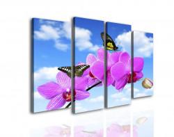 Multicanvas, Orhidee roz împotriva cerului