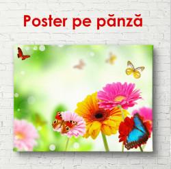 Poster, Flori de primăvară luminoase cu fluturi