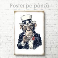 Poster, Maimuță serioasă