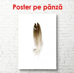Poster, Pană