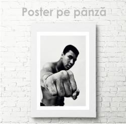Poster, Sportsman
