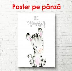 Poster, Zebră pe fundal alb