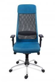 Scaun ergonomic operational pentru birou cu spatar inalt SSB-22