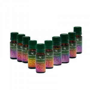Pachet 10 uleiuri parfumate Teen Scents, Aroma Land, 10 ml