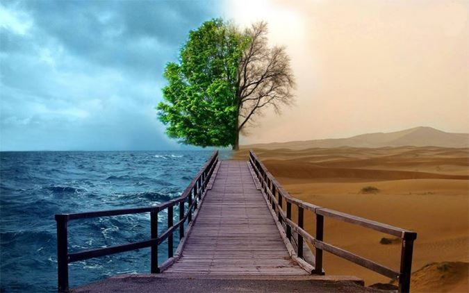Emotiile si Gemoterapia