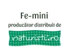 Fe-mini