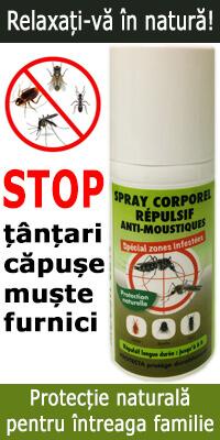 Scapa natural de tantari, capuse, muste sau furnici - Protectie naturala pentru intreaga familie!