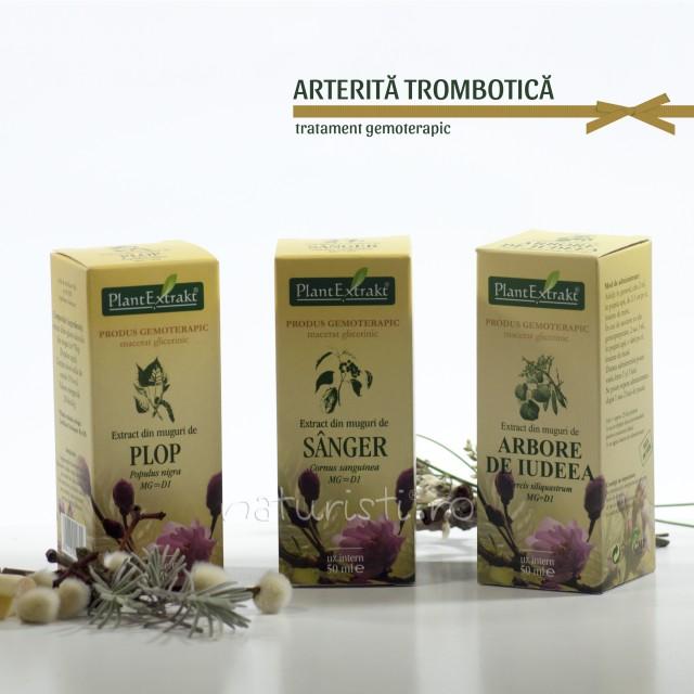 Tratament naturist - Arterita - trombotica (pachet)