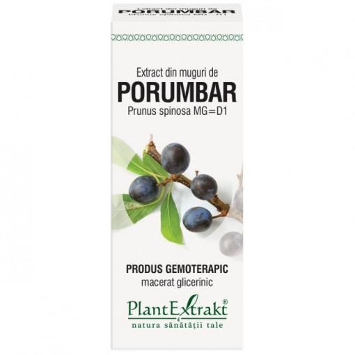 Extract din muguri de porumbar (PRUNUS SPINOSA)
