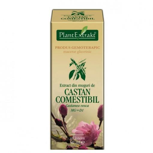 Extract din muguri de castan comestibil 50 ml (CASTANEA VESCA)