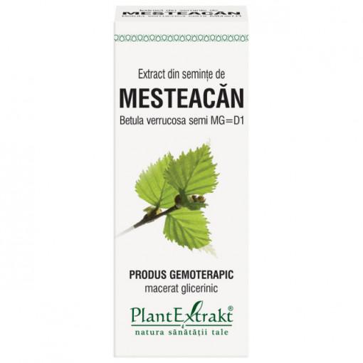Extract din seminte de mesteacan 50 ml (BETULA VERR)