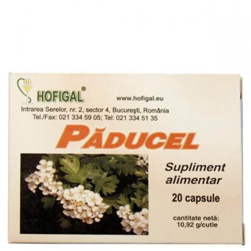 Paducel - 20 cps Hofigal