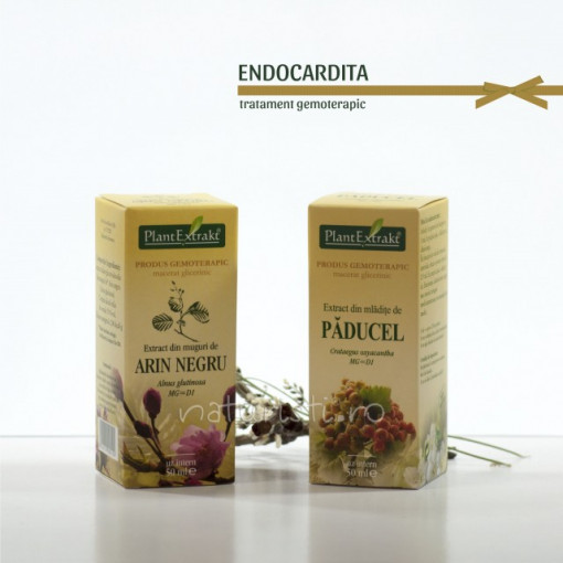 Tratament naturist - Endocardita (pachet)