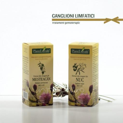 Tratament naturist - Ganglioni limfatici (pachet)