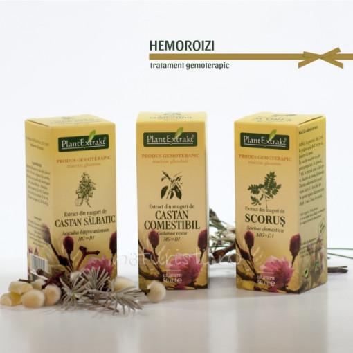Tratament naturist - Hemoroizi (pachet)