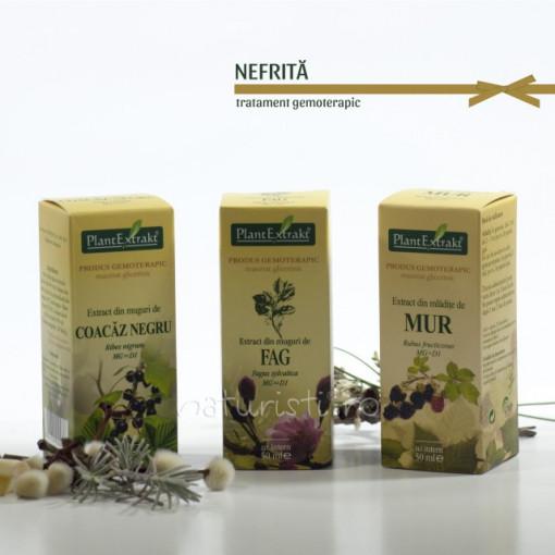 Tratament naturist - Nefrita (pachet)
