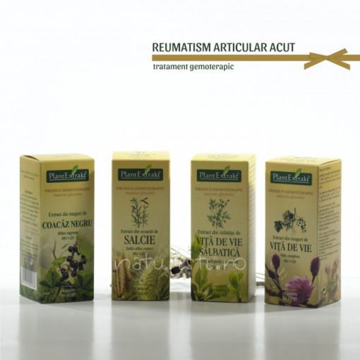 Tratament naturist - Reumatism articular acut (pachet)