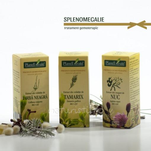 Tratament naturist - Splenomegalie (pachet)