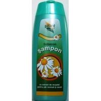 Sampon - sebacon 200ml