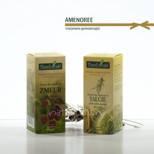 Tratament naturist - Amenoree (pachet)