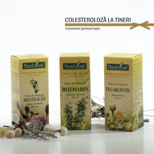 Tratament naturist - Colesteroloza la tineri (pachet)