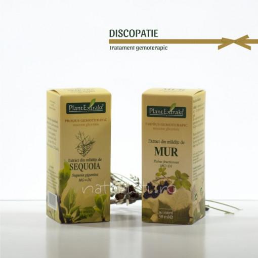 Tratament naturist - Discopatie (pachet)