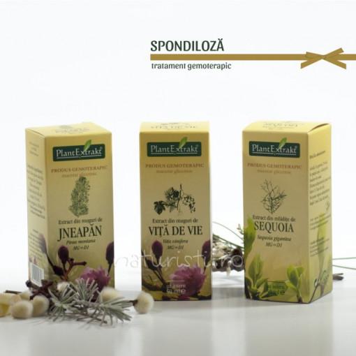 Tratament naturist - Spondiloza (pachet)