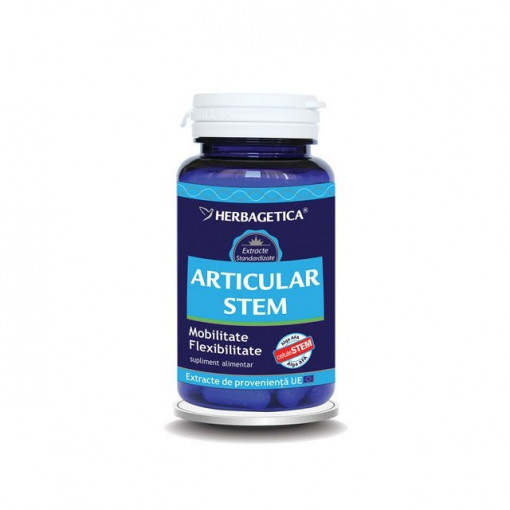 Articular STEM 60 cps