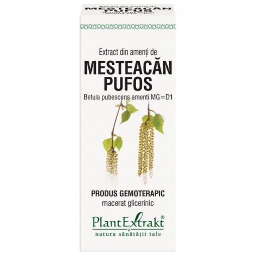Extract din amenti de mesteacan pufos (BETULA PUBESCENS AMENTI MG=D1) 50ml