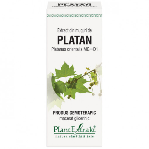 Extract din muguri de platan (PLATANUS ORIENTALIS)