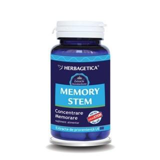 Memory STEM 30 cps