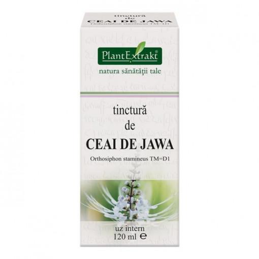 Tinctura de Ceai de Jawa 120 ml (ORTHOSIPHON)