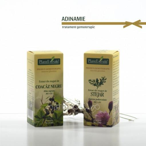 Tratament naturist - Adinamie (pachet)